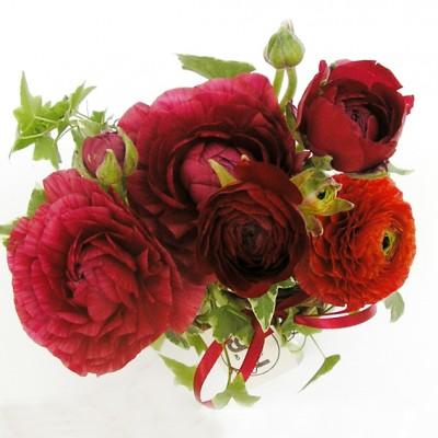 yau flori+aranjamet jos cu ranunculus rosu (2)