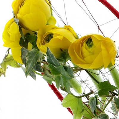 YaU flori 2012+din inima (3)