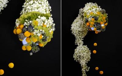 YaU flori_pentru international floral art 14-15_floral design elena madalina toader_foto sebastian moise (3)