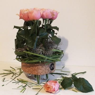 yau flori+trandafiri de gradina in suporti yau din pluta