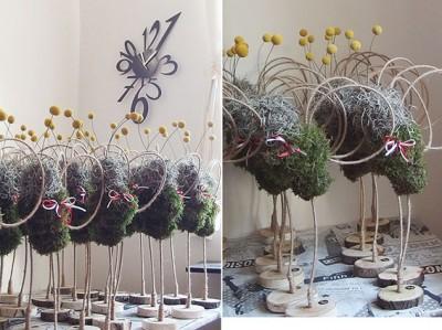yau flori+aramata de zburatoare ZUZE+armata primaverii
