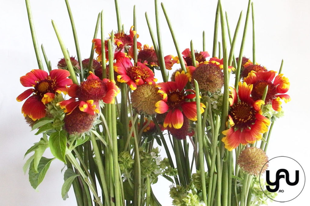 Aranjamet floral busuioc si rudbeckia _ yauconcept _ elenatoader (1)