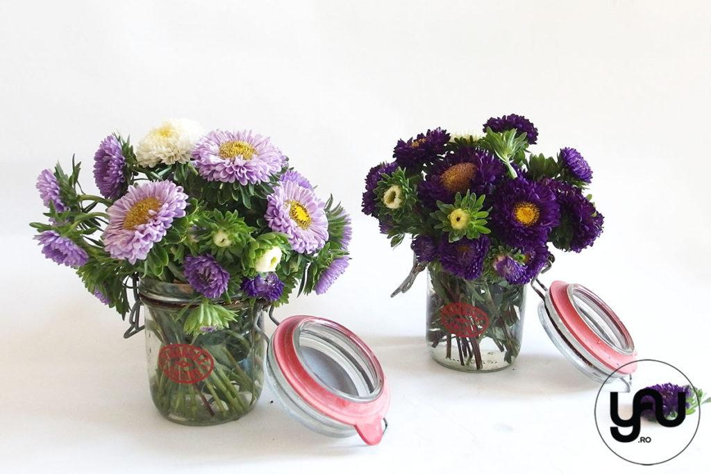 Flori De Vara Lila Mov Ochiul Boului Yau Concept Blog