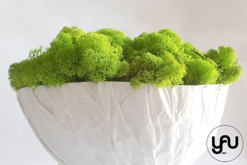 decor-verde-cu-muschi-licheni-_-yauconcept-_-elena-toader-1
