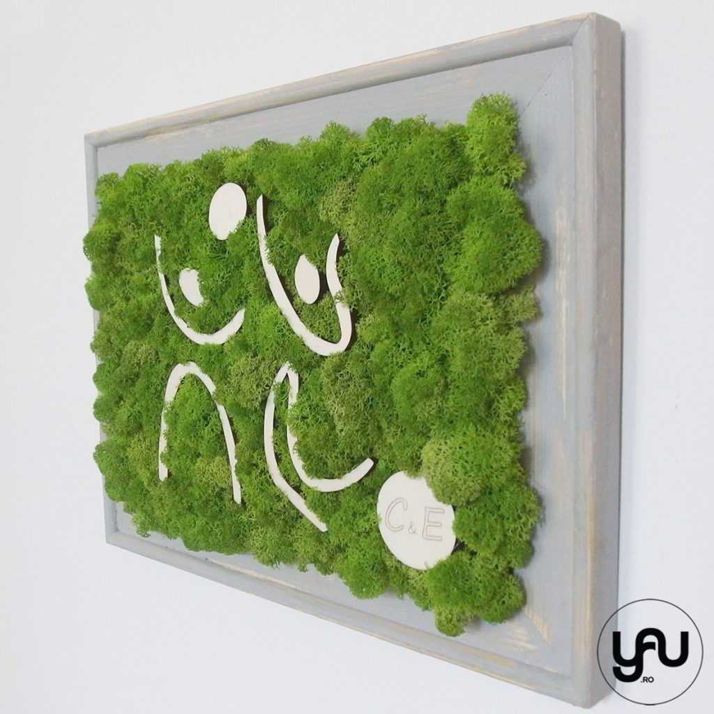 tablou-muschi-licheni-decor-verde-perete-_-yauconcept-2016-_-elenatoader-4