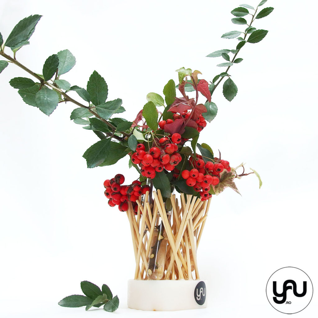 cadou-craciun-bobite-rosii-de-iarna-_-yau-concept-_-elenatoader-3