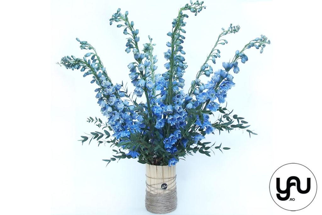 flori-albastre-delphinium-_-yauconcept-_-elenatoader-1