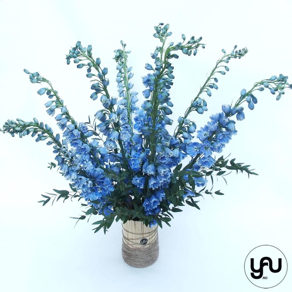 flori-albastre-delphinium-_-yauconcept-_-elenatoader-3