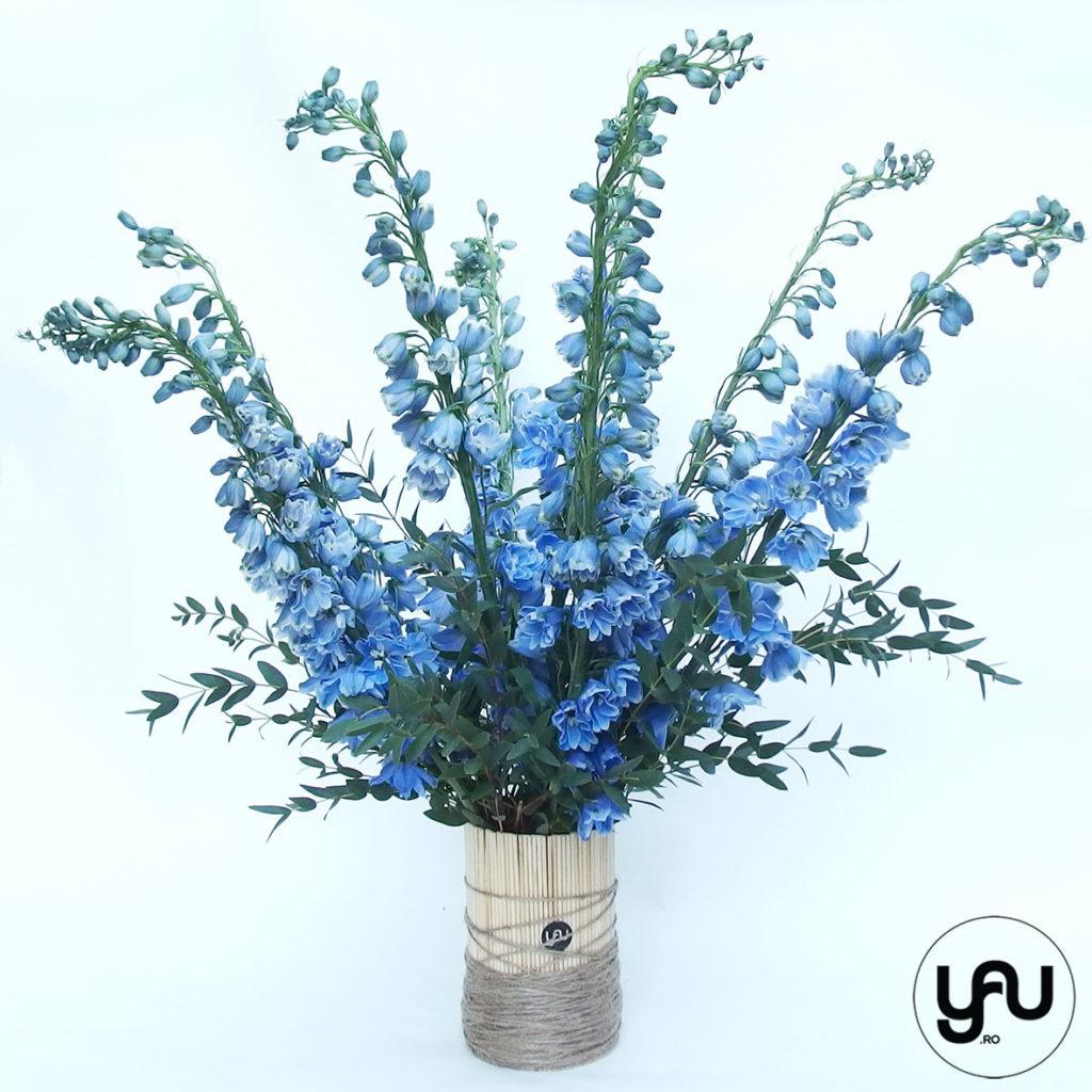flori-albastre-delphinium-_-yauconcept-_-elenatoader-4