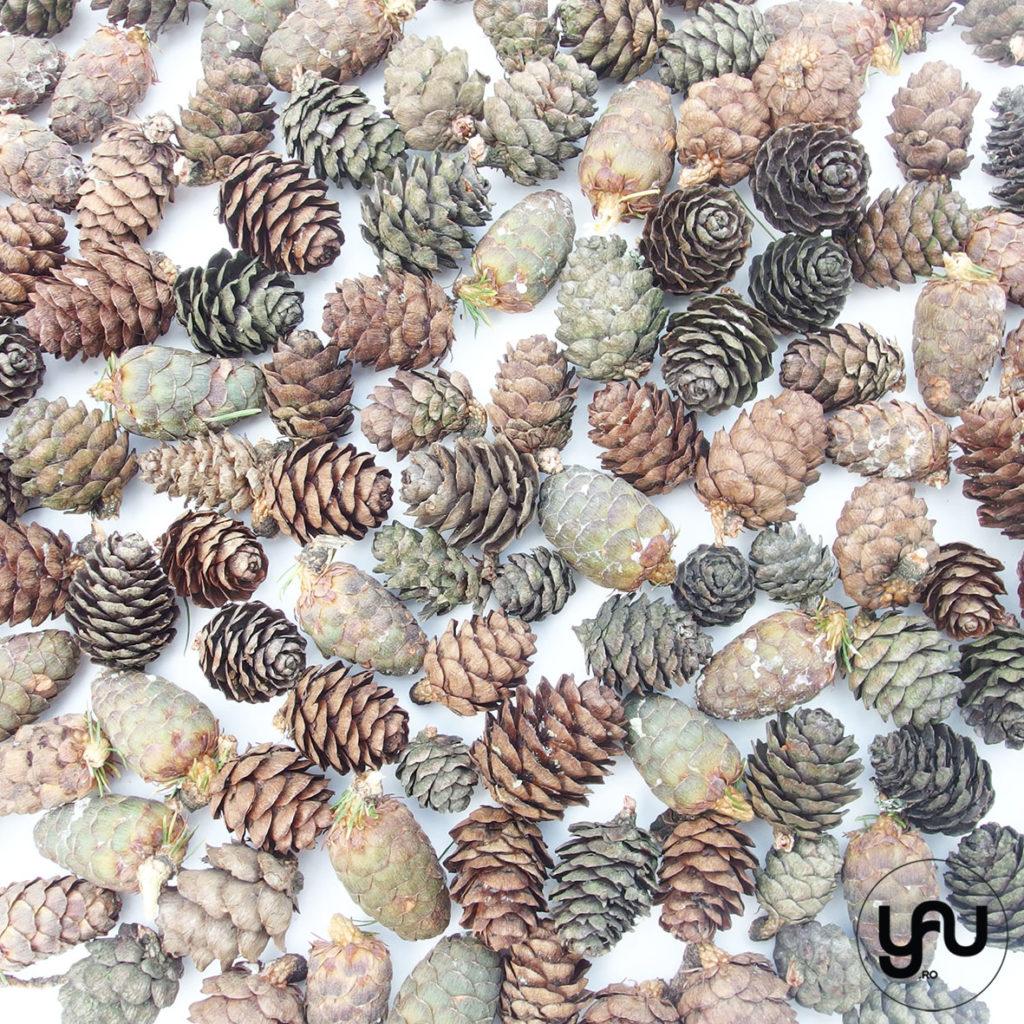 texturi de iarna _ winter patterns _ yauconcept _ elenatoader (4)