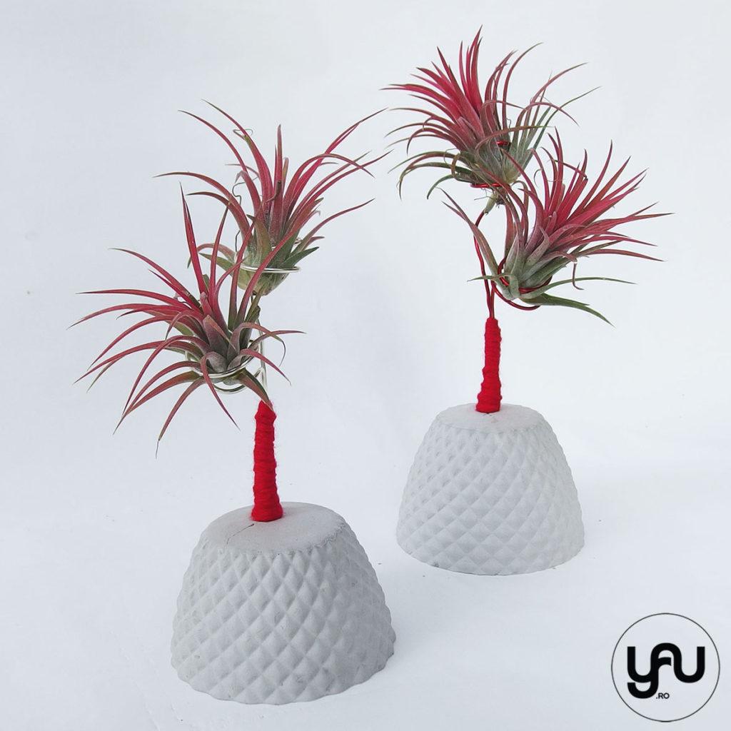 Martisoare cu plante aeriene _ yauconcep _ elenatoader (2)