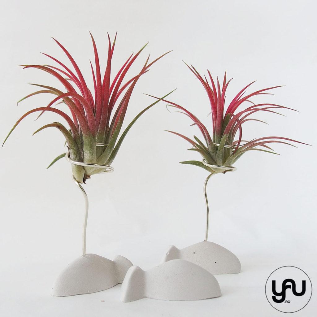 plante aeriene si suporty YaU PESTISOR _ flori MARTIE _ YaU Concept _ elenatoader (3)
