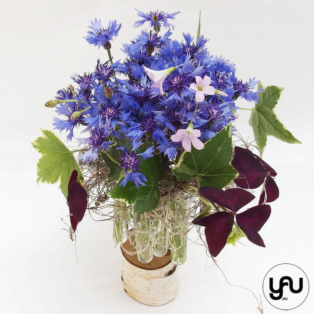 Flori de camp albastre YaUconcept ElenaTOADER