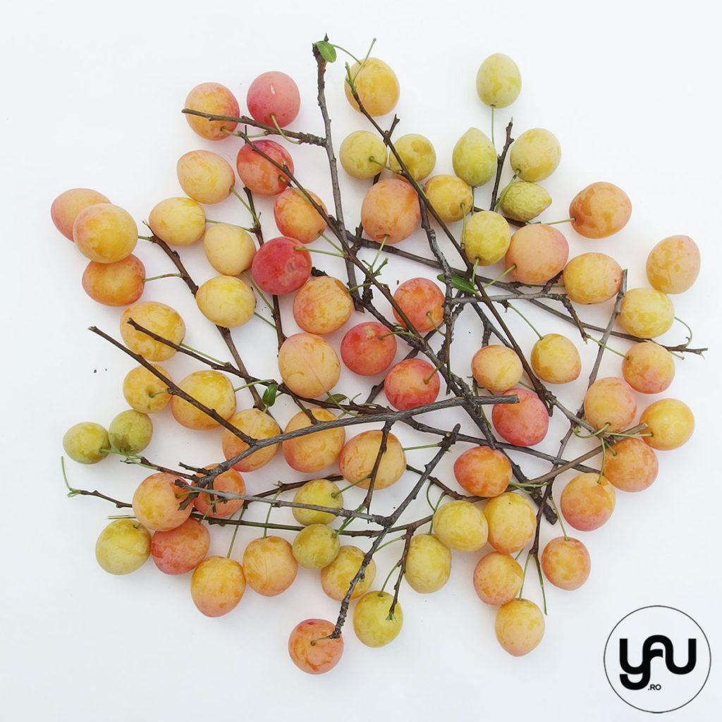 Fructele verii YaUdigitalpaper YaUconcept ElenaTOADER