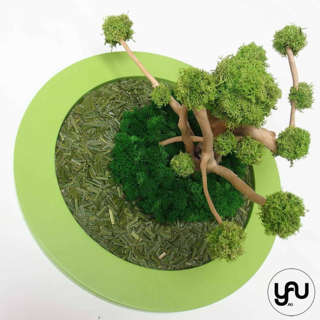 Panou verde LICHENI stabilizati PAMANAT YAUconcept ElenaTOADER