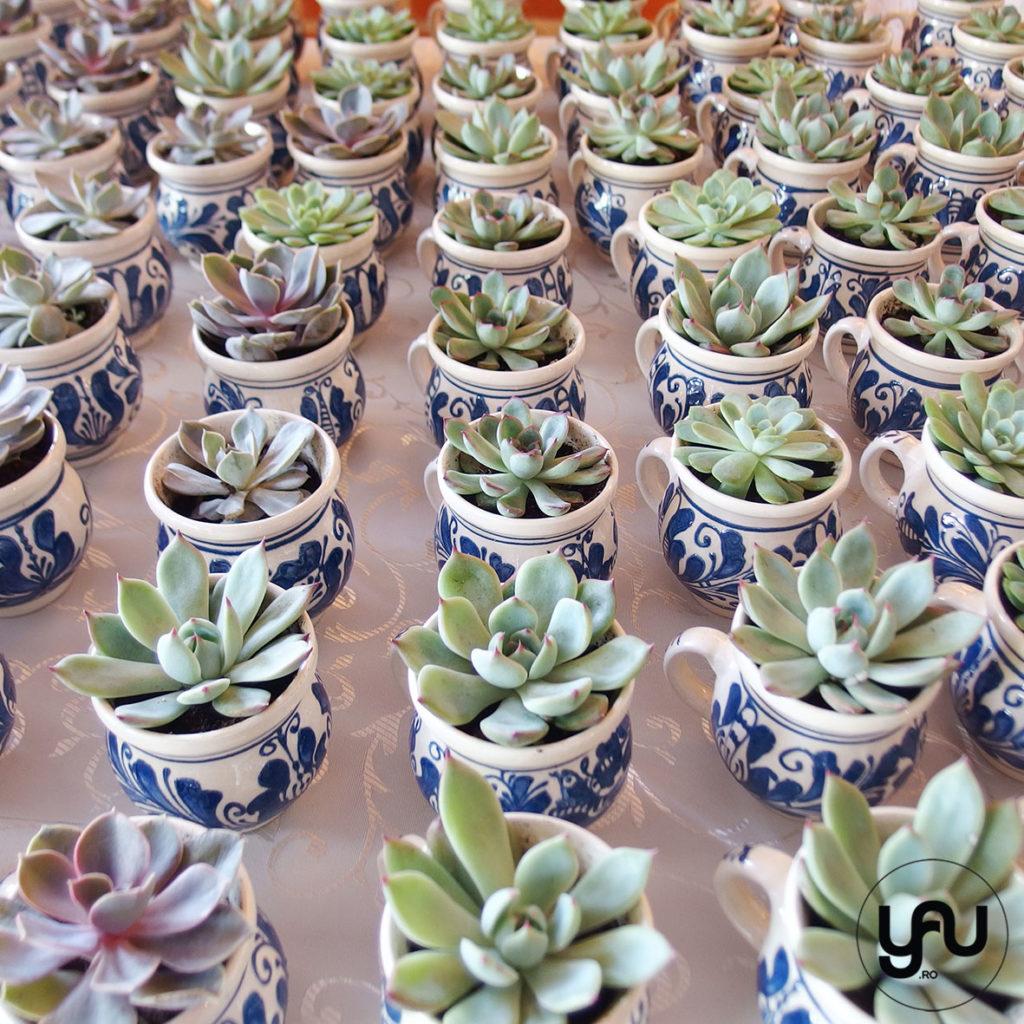 Marturii nunta plante suculente YaUconcept ElenaTOADER