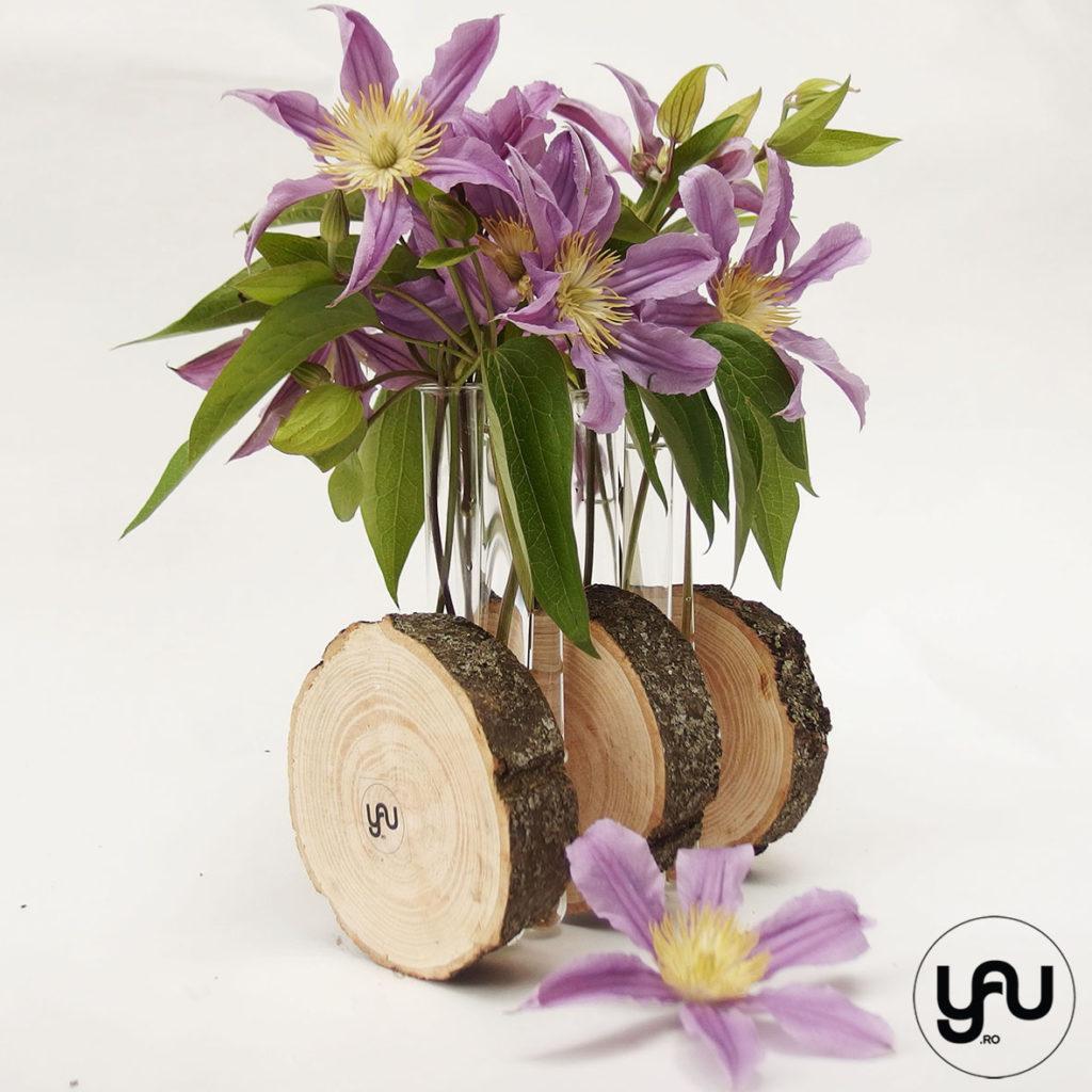 Clematis si lemn | YaU Concept BLOG | Elena TOADER