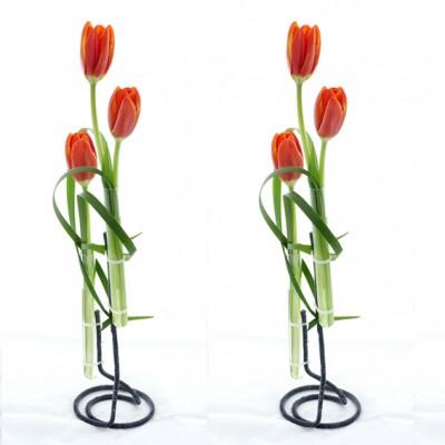 yau flori 2012+happy feets+aranjament cu lalele (1)