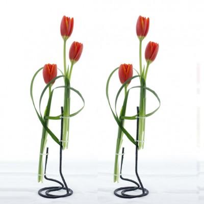 yau flori 2012+happy feets+aranjament cu lalele