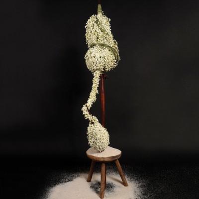Yau flori_pentru international floral art 14-15_floral design elena madalina toader_foto sebastian moise (1)