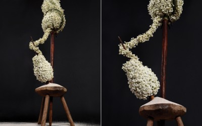 Yau flori_pentru international floral art 14-15_floral design elena madalina toader_foto sebastian moise (2)