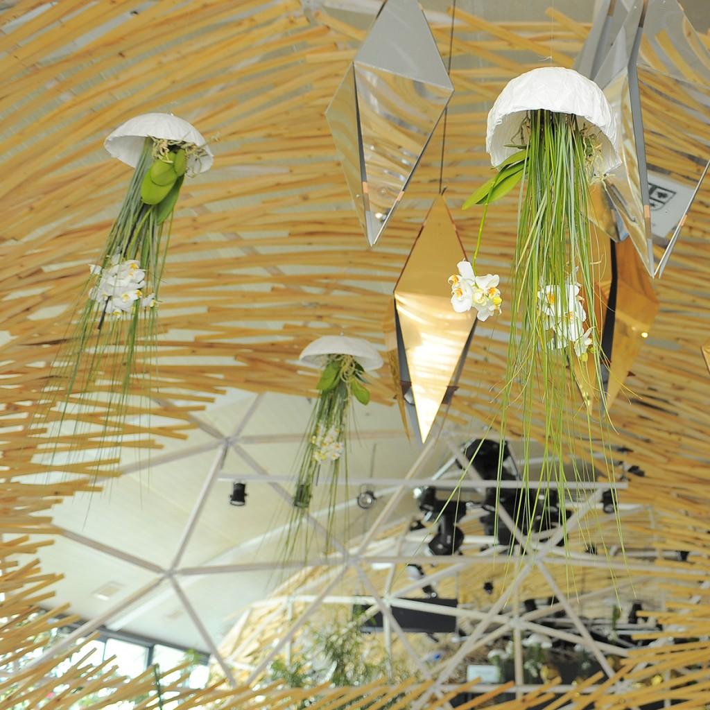 Meduze cu flori   YaU evenimente   Under Water 2015