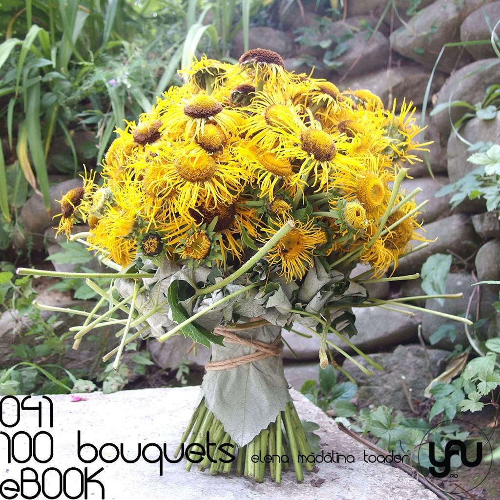 ECHINACEA #100bouquets #ebook #yauconcept #elenamadalinatoader