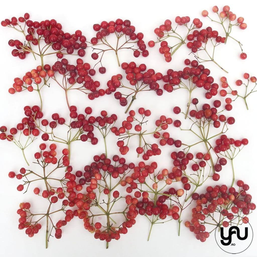 TEXTURA de vara _ summer patterns bobite rosii de vara_yau _ yau concept_elenatoader (3)