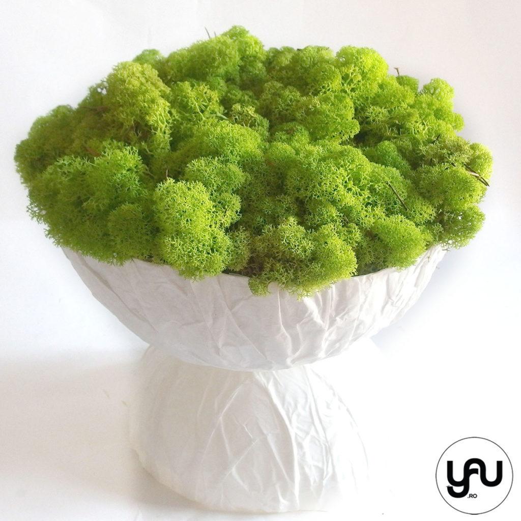 decor-verde-cu-muschi-licheni-_-yauconcept-_-elena-toader-2
