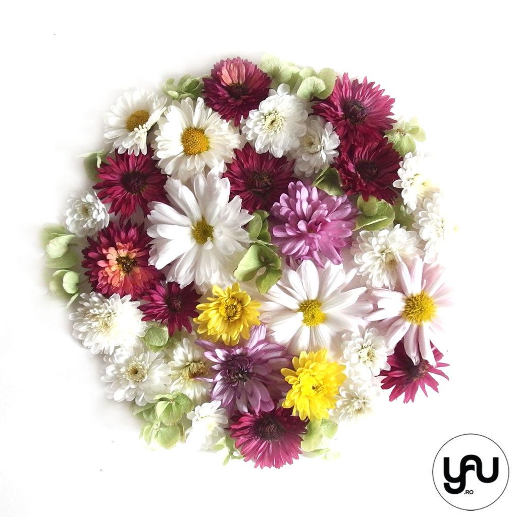 crizanteme-colorate-geometria-toamnei-_-yau-concept-_-elenatoader-4