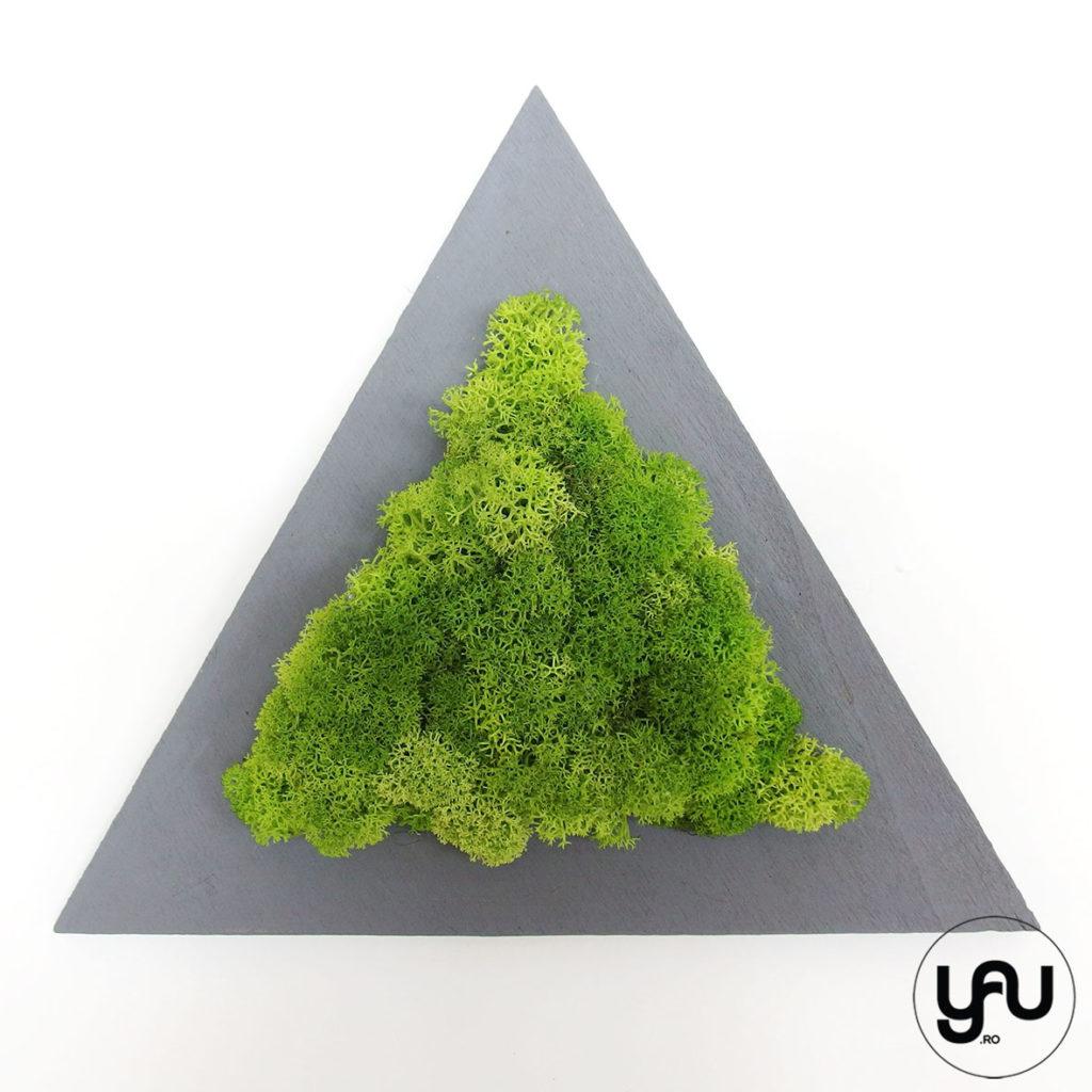 cadouri-craciun-licheni-stabilizati-verzi-forme-geometrice-_-yauconcept-_-elenatoader-3