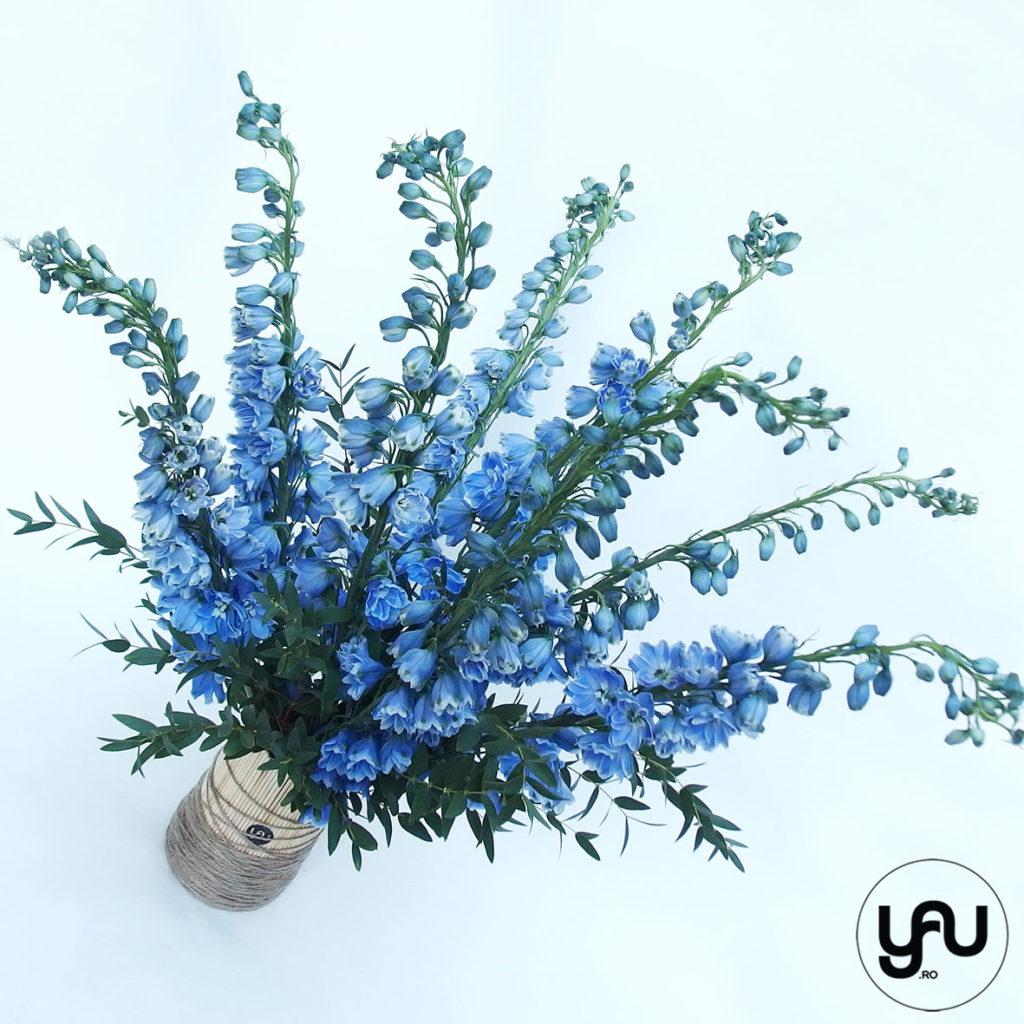 flori-albastre-delphinium-_-yauconcept-_-elenatoader-2