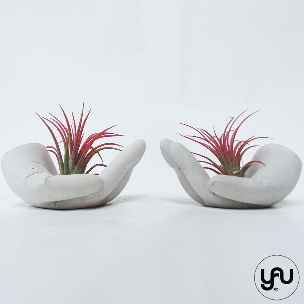 plante aeriente rosii in MANA ta, pentru acest MARTIE _ YaU Concept _ elenatoader _ flori 1-8 martie (3)