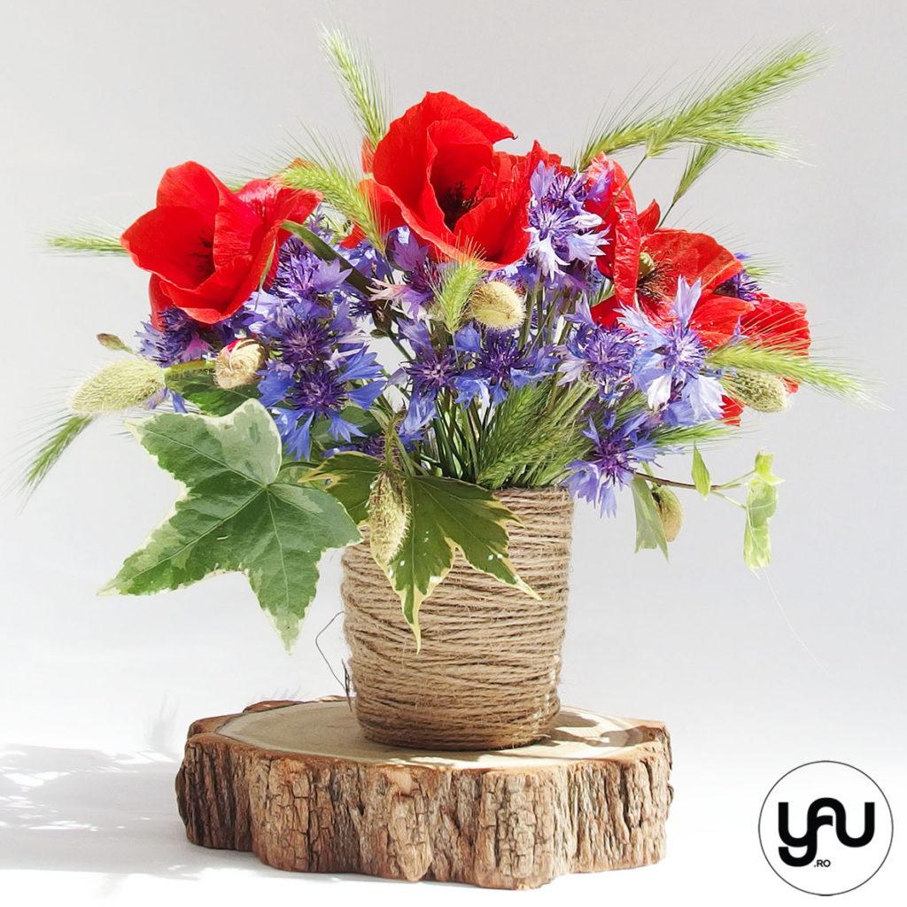 Flori de camp MACI si ALBASTRELE YaUconcept ElenaTOADER