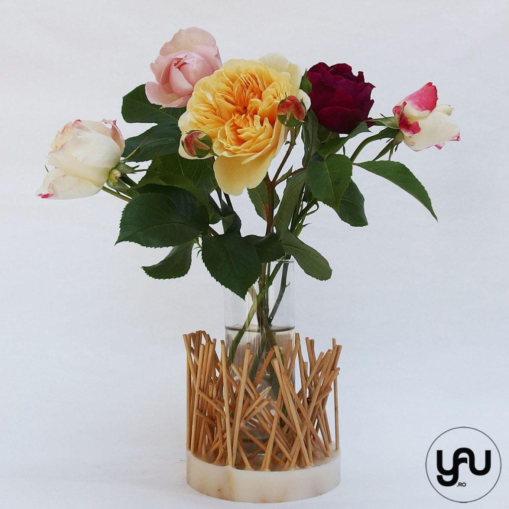 Trandafiri de gradina YaUconcept ElenaTOADER