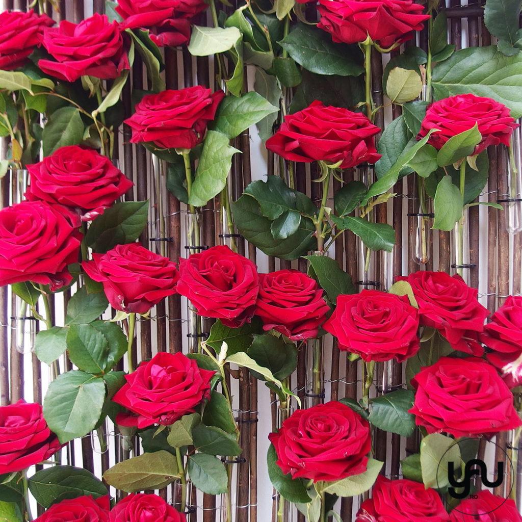 Trandafiri rosii pentru decor floral de perete YaUconcept ElenaTOADER