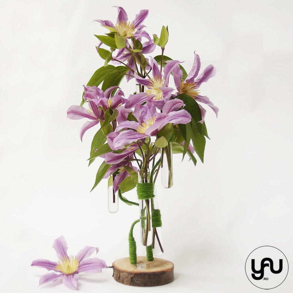 Primavara flori albastre YaUconcept ElenaTOADER