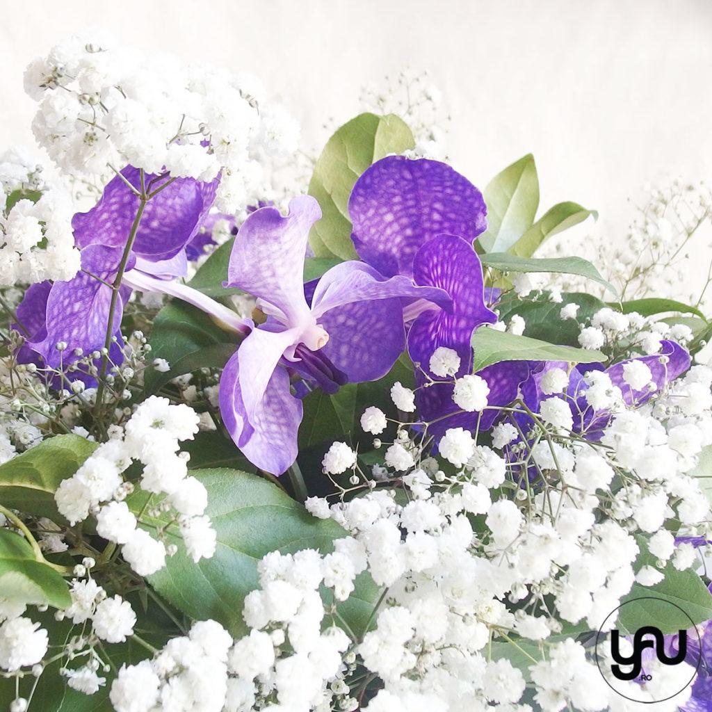 Orhidee si Gypsophila YaUconcept ElenaTOADER