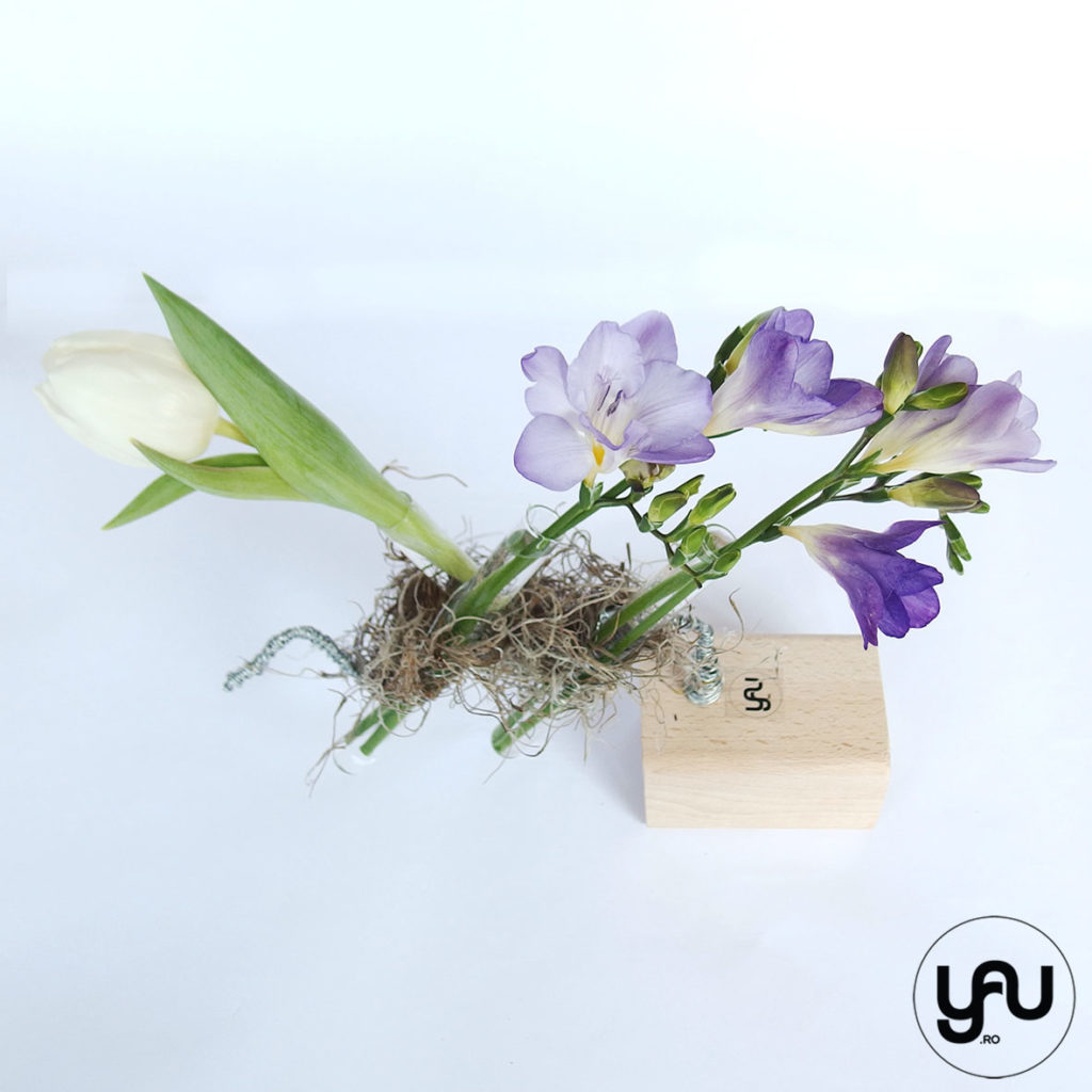 Frezii si Lalele pentru Martie YaU Spring 2019 YaU Concept Elena TOADER