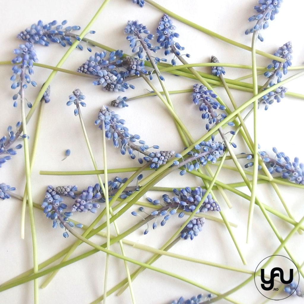 Texturi florale cu MUSCARI YaUConcept YaUdigitalstore Elena TOADER
