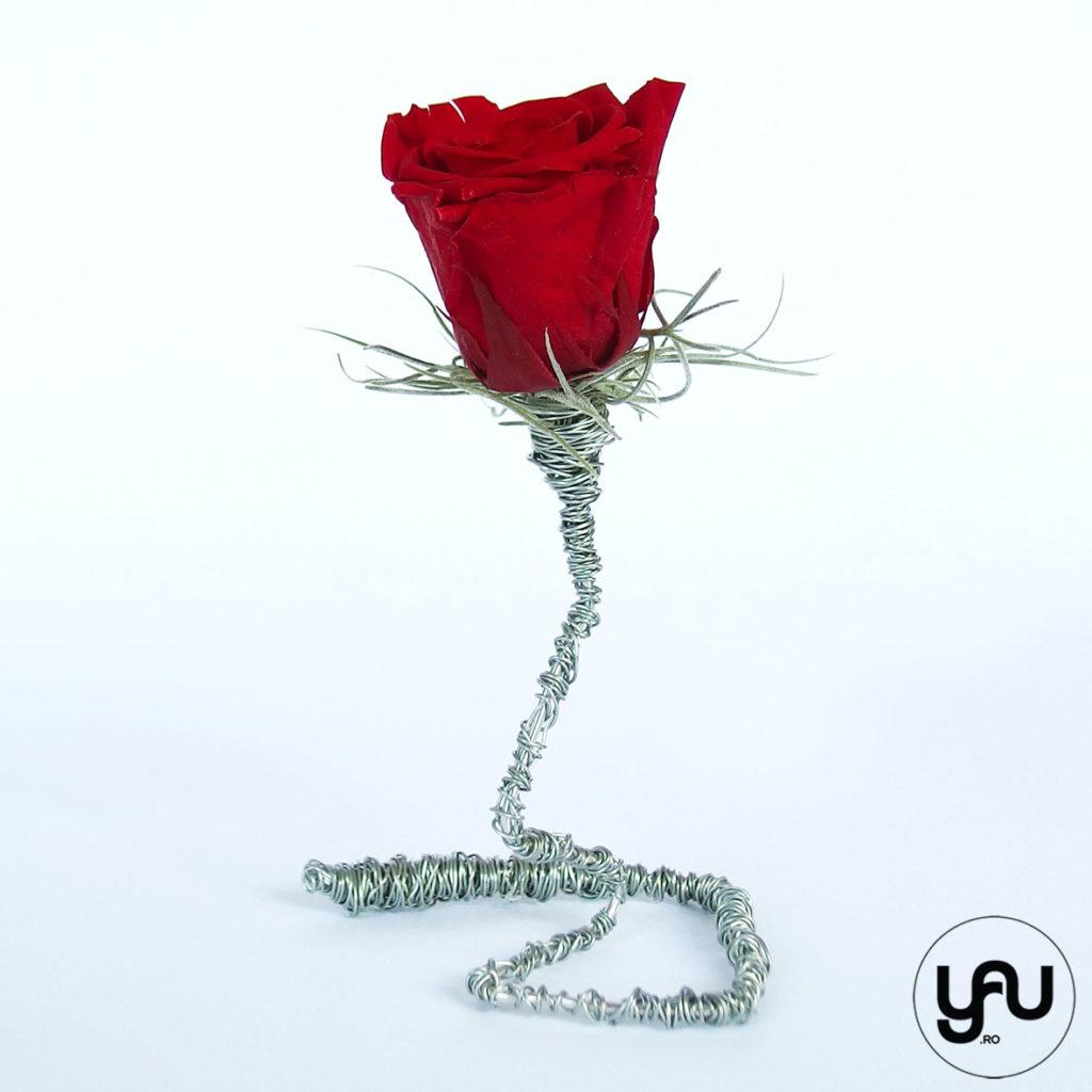 TRANDAFIRII sunt ROSII de Sf Valentin YaU Spring 2019 YaU Concept