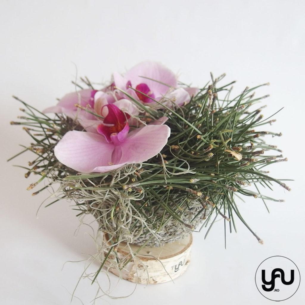 Orhidee ROZ YaU Concept Elena TOADER