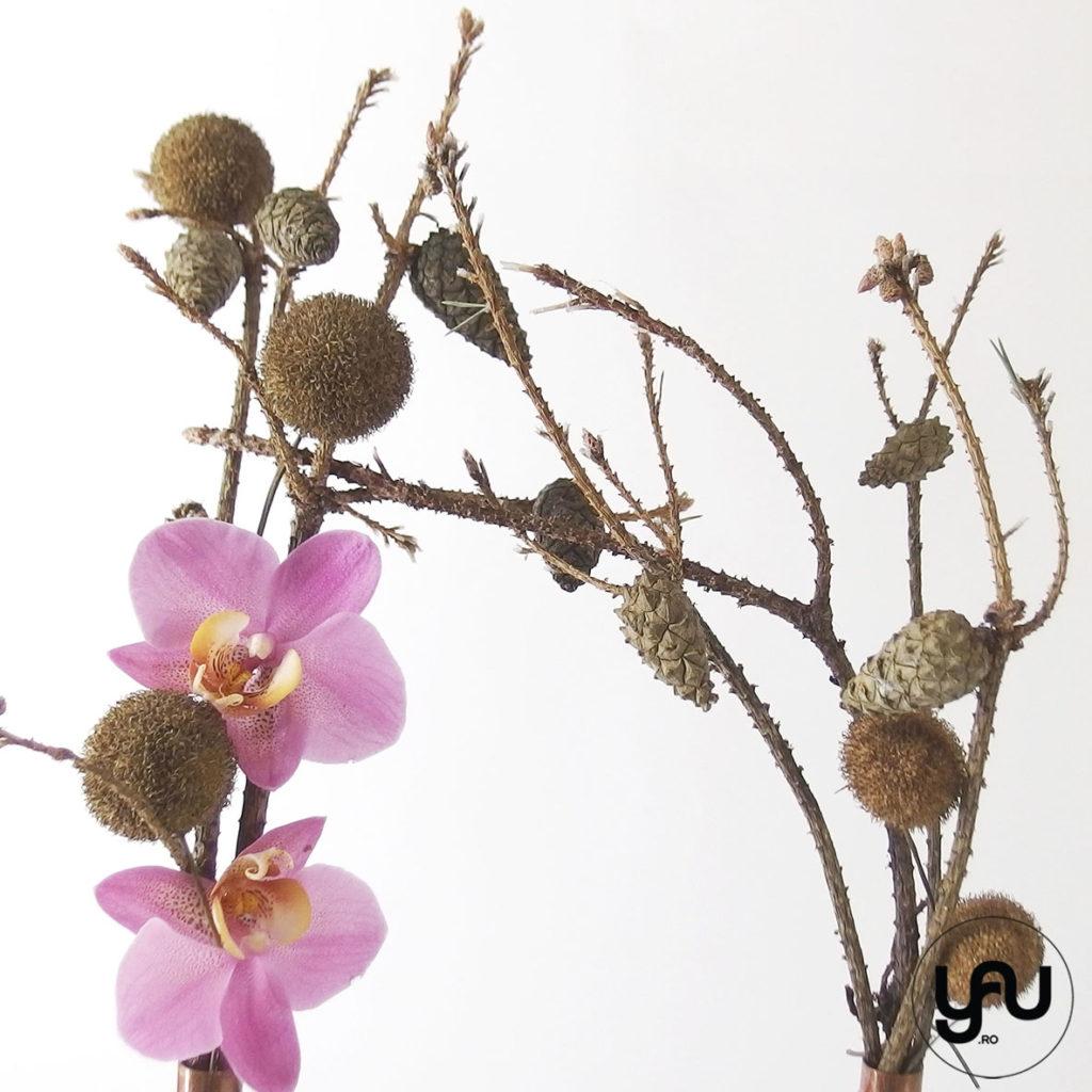 Orhidee ROZ yau.ro yau concept Elena TOADER