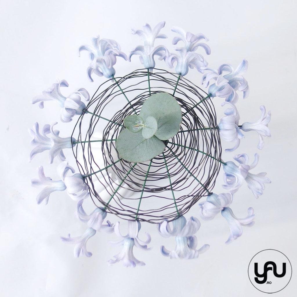 Flori albastre zambile yau.ro yau concept elena toader