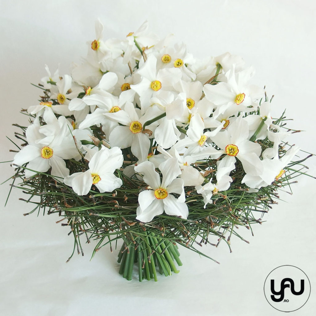 Buchet NARCISE si PIN yau.ro yau concept elena toader narcise albe contemporary floral art