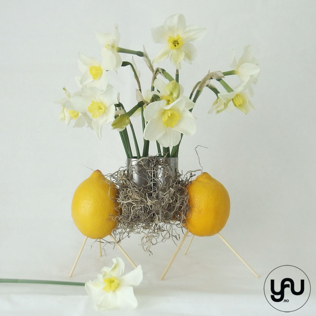 Narcise & Lamai yau.ro yau concept elena toader aranjament floral narcise galbene