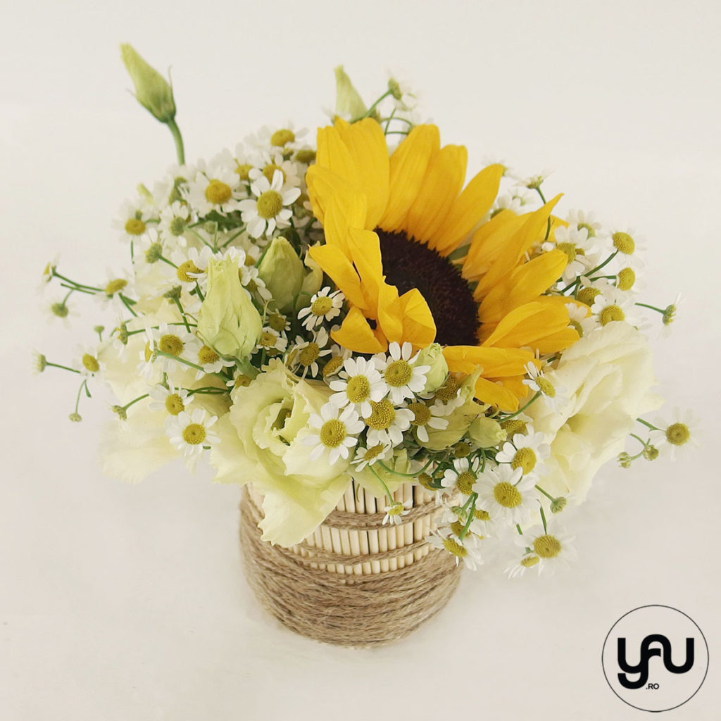 Flori GALBENE musetele floarea soarelui yau.ro yau concept elena toader