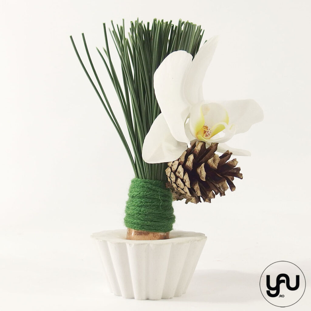 Orhidee si Conuri yau.ro yau concept Elena Toader