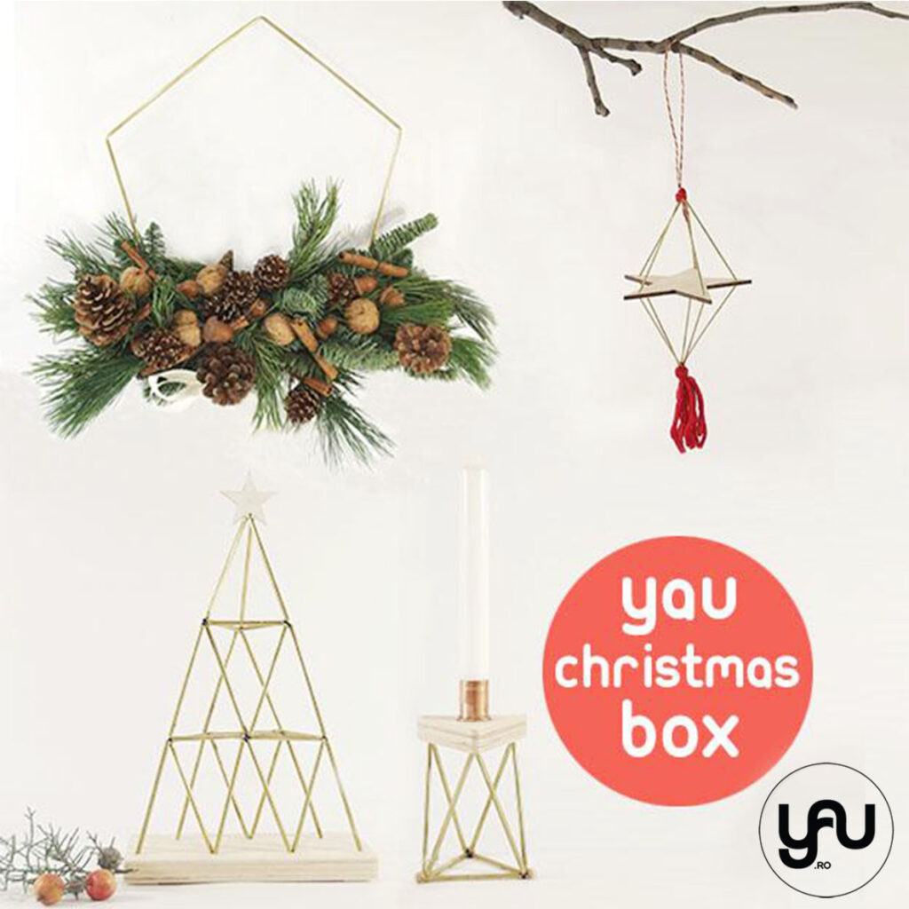YaU.ro CHRISTMAS BOX elena toader brad coronita sfesnic decoratiuni
