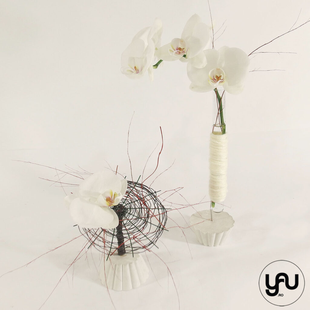 Alb si ALB orhidee alba YaU Concept Elena Toader